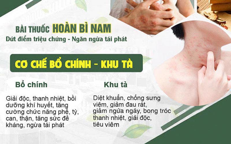 Hoàn Bì Nam điều trị viêm da tiết bã tận gốc theo cơ chế bổ chính khu tà