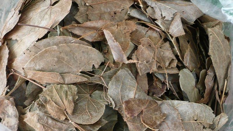Tìm hiểu về cây thuốc Dâm Dương Hoắc