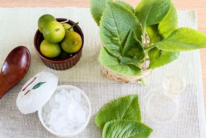 Kết hợp lá tần, quýt xanh và đường phèn để nâng cao công dụng chữa ho