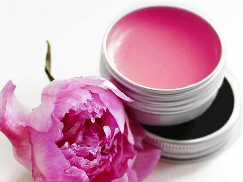 Cánh hoa hồng chứa nhiều vitamin E có tác dụng dưỡng và làm hồng môi