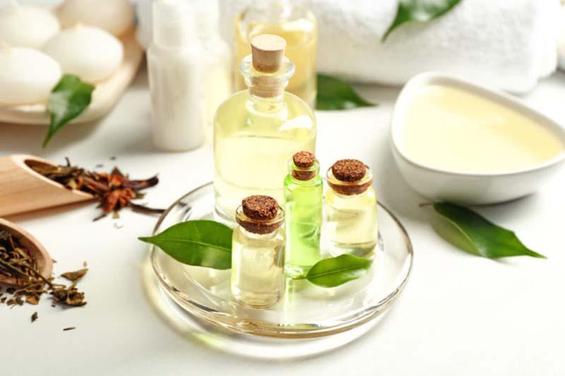 Sử dụng tinh dầu cây trà cũng là một biện pháp khắc phục rất hữu hiệu