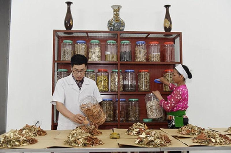 Lương y Hoàng Văn Tuấn tại phòng khám bốc thuốc cho bệnh nhân