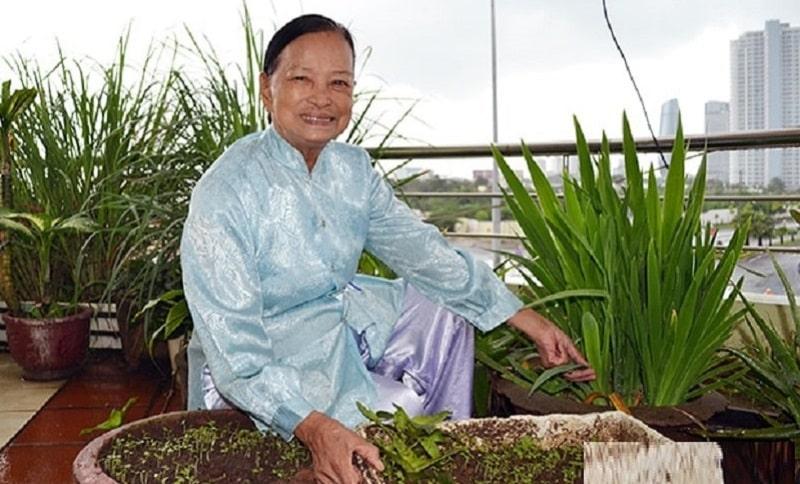 Lương y chữa bệnh tiểu đường Nguyễn Thị Quế