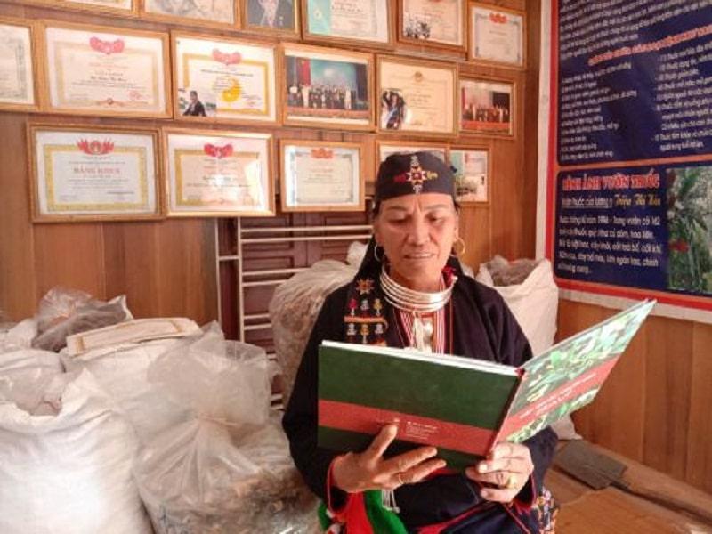 Lương y Triệu Thị Hòa là hậu duệ đời thứ 5 của dòng họ Triệu nổi tiếng với nghề hái và bốc thuốc cứu người