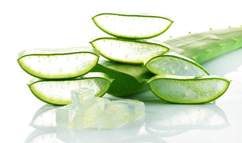 Nha đam, hay lô hội, có công dụng làm dịu da, loại bỏ bụi bẩn, tế bào chết hiệu quả