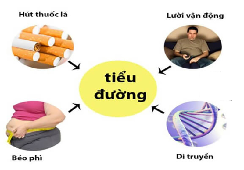 Đây là những nguyên nhân gây ra bệnh tiểu đường tuýp 2