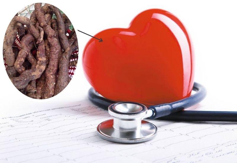 Dược liệu có rất nhiều tác dụng tốt đối với sức khỏe con người