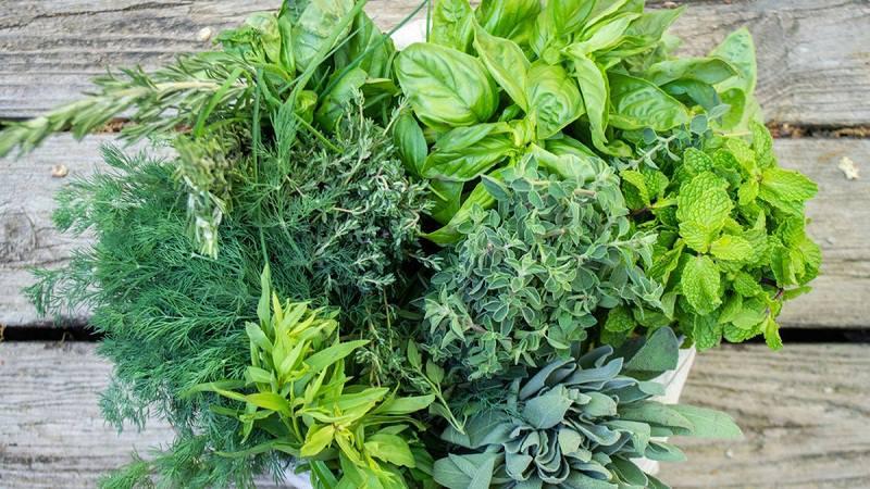 Ăn nhiều rau sống cũng là một cách giúp kiểm soát các bệnh tiểu đường và răng miệng