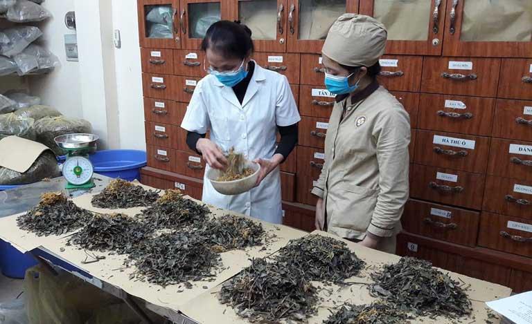 Bác sĩ Lê Phương dùng nhiều năm để nghiên cứu bài thuốc điều trị dứt điểm bệnh mề đay