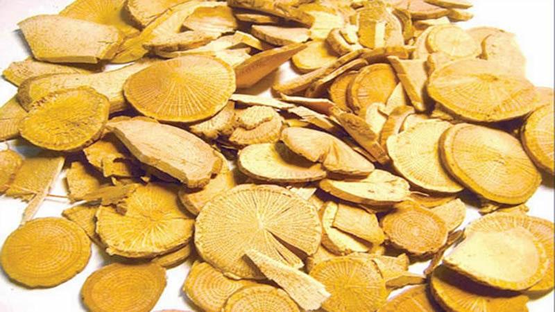 Mộc thông là thành phần dược liệu chủ trong bài thuốc Bát chính tán