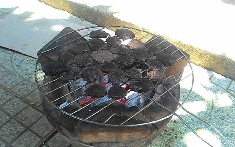 Cách chữa quai bị bằng hạt gấc đem nướng rất hiệu quả