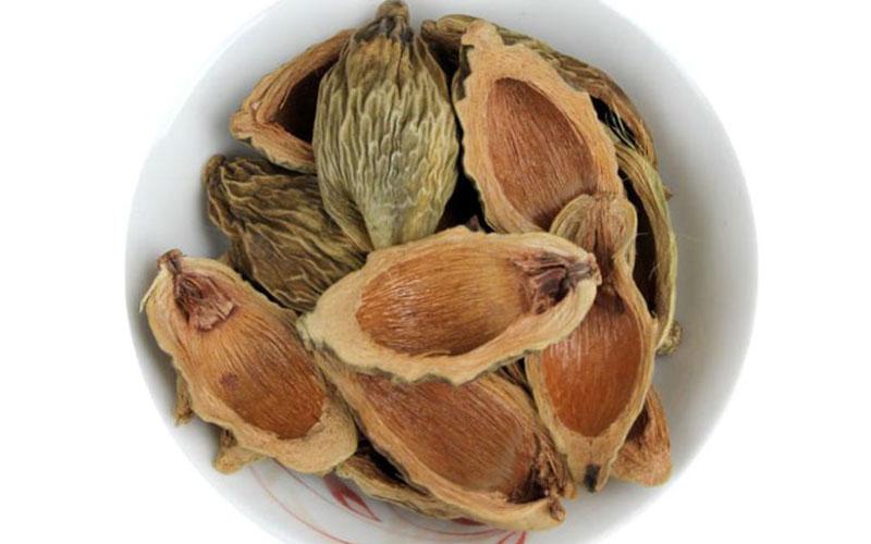 Hạt cau khô được sử dụng trong bài thuốc trị sán lá trong người