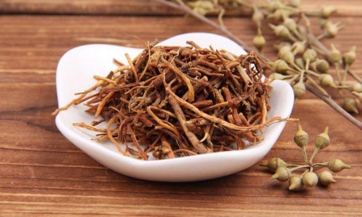 Long đởm thảo - Chủ dược trong phương thuốc Long đởm tả can thang