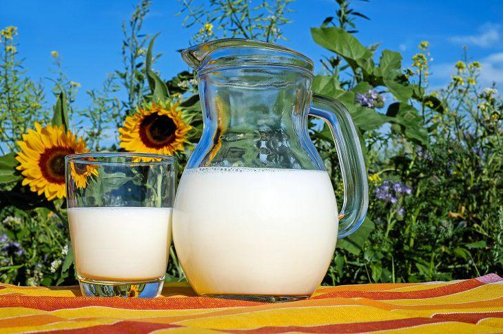 Sữa tươi là thực phẩm chứa nhiều dinh dưỡng tốt cho làn da