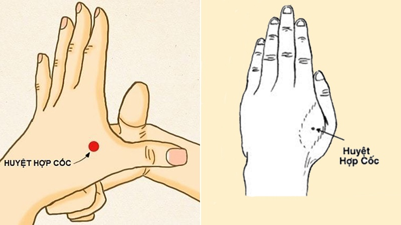Huyệt nằm ở phần lõm giữa ngon tay trỏ và ngón cái