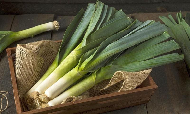 Hành Paro còn được biết đến là tỏi tây, có chứa ít nguyên tố vi lượng natri