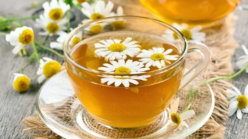 Người bị tiểu đường nên uống nước gì -Ổn định huyết áp nhờ trà hoa cúc