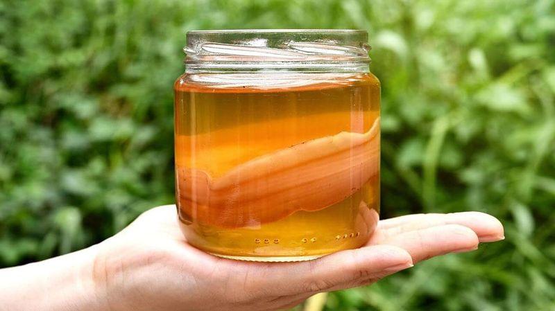 Trà Kombucha là một loại trà lên men cung cấp nhiều enzyme và vitamin có lợi cho sức khỏe