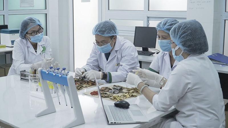 Các bác sĩ Đông y Việt Nam nghiên cứu giải pháp thải độc từ thảo dược