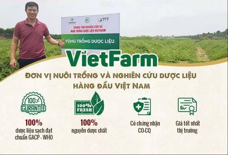 Vietfarm sở hữu hơn 100 vùng trồng dược liệu đạt chuẩn GACP - WHO