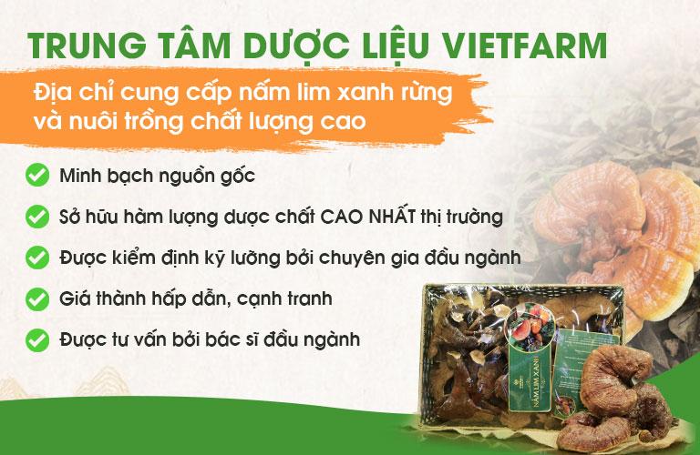 Nấm lim xanh Vietfarm sở hữu nhiều ưu điểm vượt trội hơn hẳn những đơn vị khác